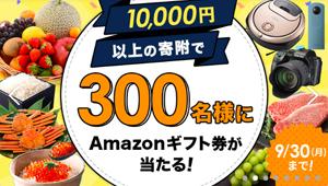 10,000円以上の寄附で300名様にAmazonギフト券が当たる!キャンペーン実施中!
